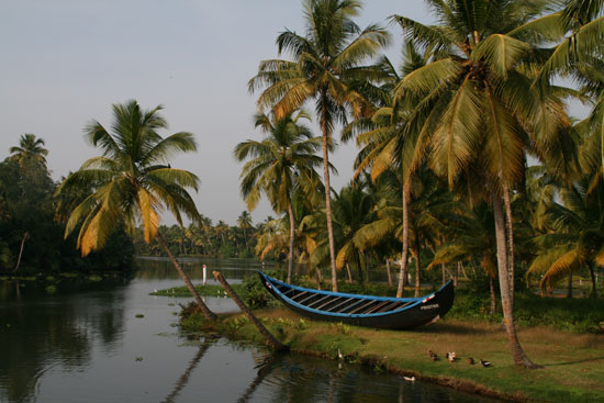 Kerala Backwaters Scenery