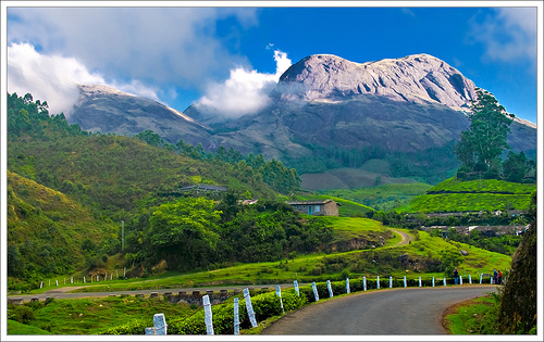 View from Munnar, Kerala. Photo by KCBimal